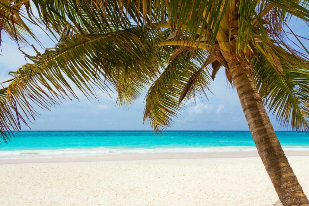 Het gevoel van permanente vakantie: Hoe creëer je dat?